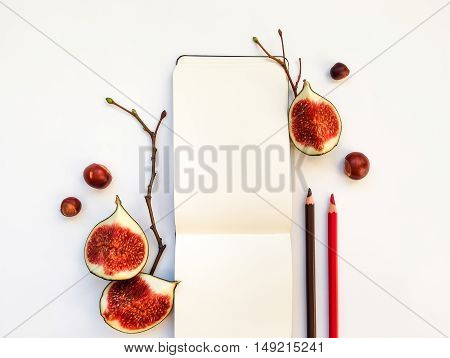 Bright autumn composition of a sketchbook pencils figs chestnuts and tree branches on white background. Flat lay top view overhead view