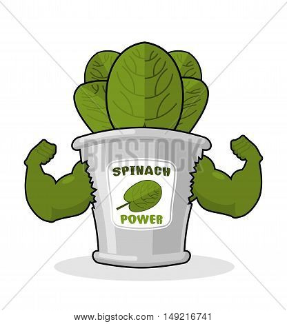 Spinach Strong And Powerful. Muscular Arms Of Banks Spinach. Healthy Greens. Athletic Green Sheets.