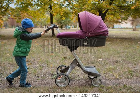 Beautiful Toddler Boy Playing With Stroller