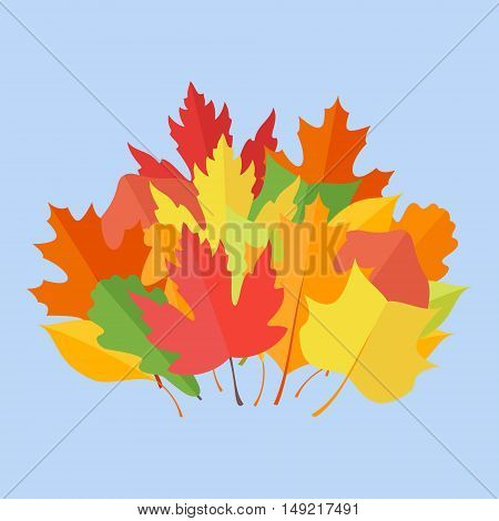 Colorful autumn leaves on blue background. Flat style vector illustration.