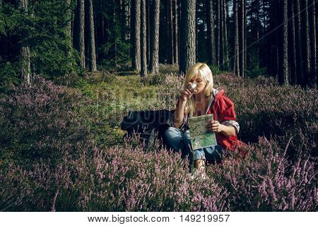 Young active woman sitting in a clearing in the woods drinking tea from a thermos and looking map. Healthy active lifestyle concept. Tourism.