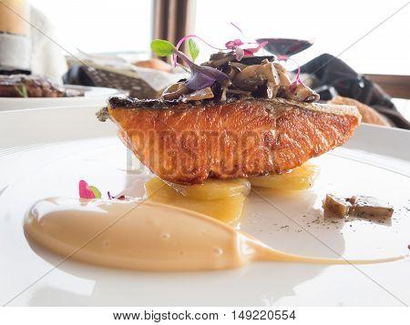 Macro Salmon Modern Dish