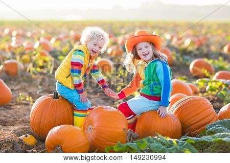Little girl and boy picking pumpkins on Halloween pumpkin patch. Children playing in field of squash. Kids pick ripe vegetables on a farm in Thanksgiving holiday season. Family having fun in autumn.