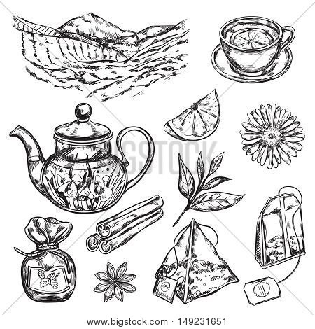 Hand draw black herbal tea teapot accessories and supplies for making tea vector illustration