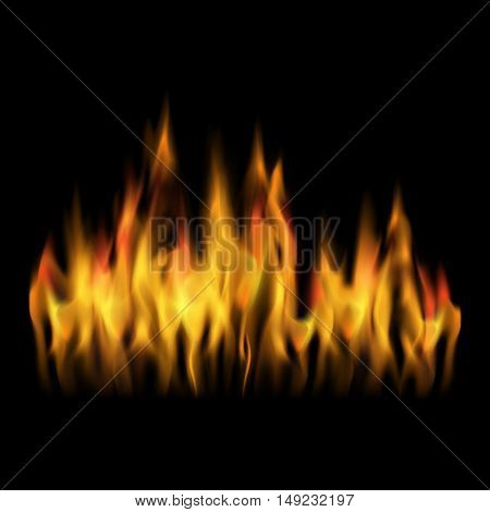 Vector black background with fire. Abstract flames design. Burning effect.