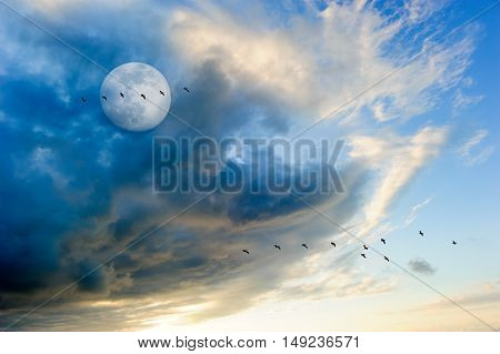 Moon clouds birds is a colorful surreal cloudscape with a flock of silhouetted birds flying by and a full moon rising in the sky.