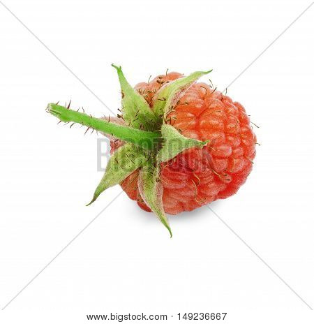 red raspberry with green leaf on white background