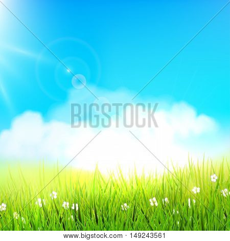 Spring meadow on a sunny day - vector background