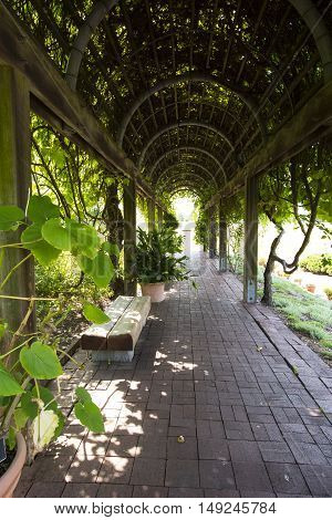 Tranquil Arbor Garden Tunnel with diminishing perspective