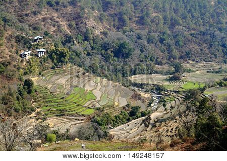 Wangdue Phodrang Valley situated in the western central part of Bhutan