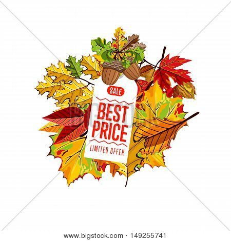 Autumn seasonal sale badge, vector illustration. Best price, limited offer label on white background with colorful autumn leaves. White price tag with red text. Autumnal discount.