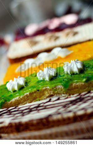 Different pieces of cake, delicious colorful dessert