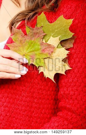 Autumnal Girl With Maple Leaves In Hand