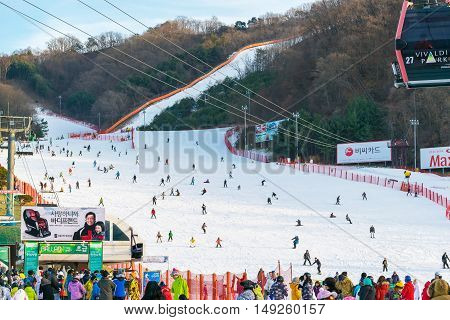 Vivaldi Park Ski Resort  In Korea.