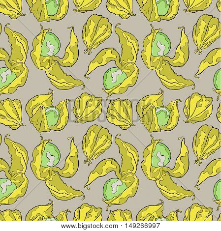 Ripe physalis. Flowers and berries. Seamless vector pattern (background).