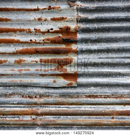 Rusty Corrugated Iron Fence