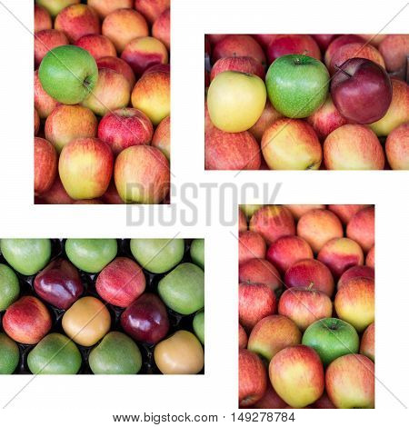 Collage from four photos of four different ripe apples types granny smith, starking, gala and golden apples laid out in rows at a grocery shop for sale on white background. Four apples photos collage.