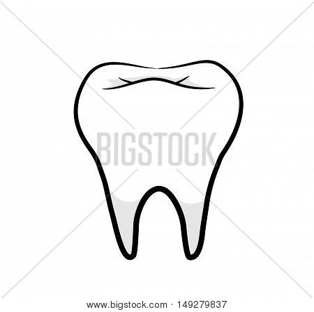 Healthy Tooth, A hand drawn vector illustration of a healthy tooth.