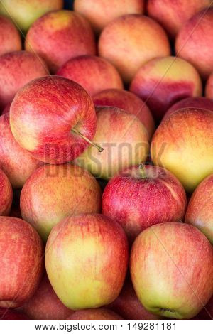 Ripe selected gala apples laid out in rows at a grocery shop for sale. Colorful background of gala apples. Vertical. Daylight.