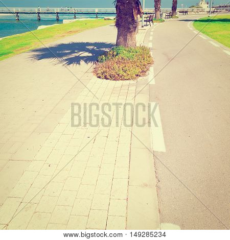 Bicycle Track along the Yarkon river in Tel Aviv Israel Instagram Effect