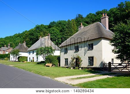 View along the pretty village street with thatched cottages Milton Abbas Dorset England UK Western Europe.