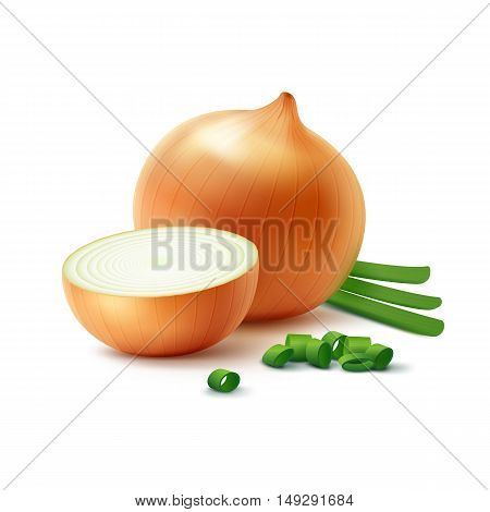 Vector Fresh Whole and Sliced Yellow Onion Bulbs with Chopped Green Onions Close up Isolated on White Background