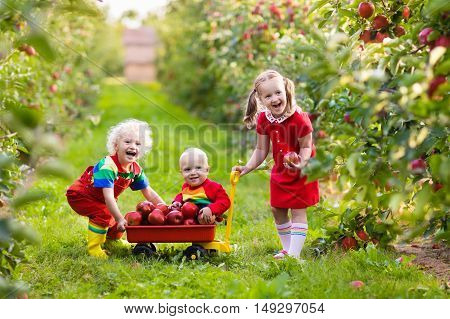 Children picking apples in fruit garden. Girl boy and baby play in apple tree orchard. Kids pick fruit in autumn with a wheel barrow. Little farmers eat apples at fall harvest. Outdoor fun for family
