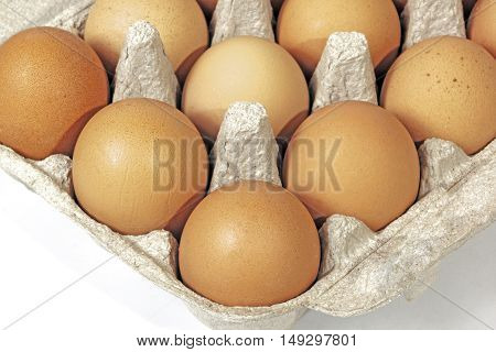 Close up studio shot of corner of package containing chicken eggs with textures and patterns
