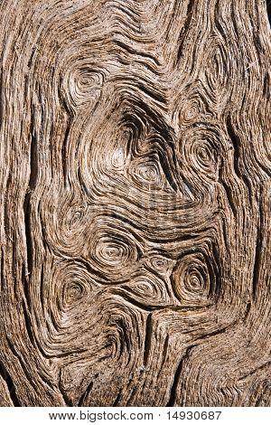 Circular Wood Grain