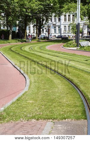 Green grass with sinuous rails in the day in the city