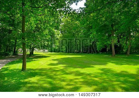 Bright meadow with green grass in a beautiful park.