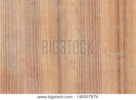 Wood surface nature background beautiful and space for text