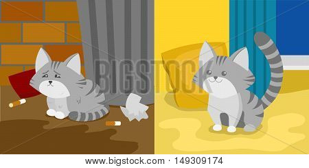 Homeless and domestic kitten. Cartoon colorful vector illustration
