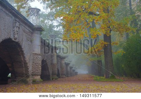 Misty autumn morning in the Catherine park in Tsarskoye Selo