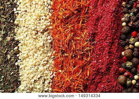Mix of different spices in lines, closeup
