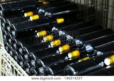Bottles with wine on shelves in cellar