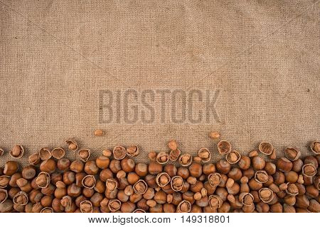 Natural unbroken hazelnuts on a jute bag background. Top view.
