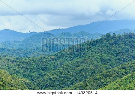 Area hills green forests with nature landscape cloud cover .
