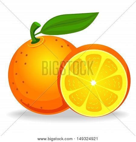 Vector Illustration of Whole and Half Orange Set Fruit
