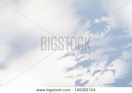 Shadows of flowers on a white semi-transparent cloth