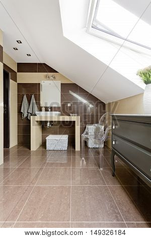 Attic Bathroom In Brown Idea