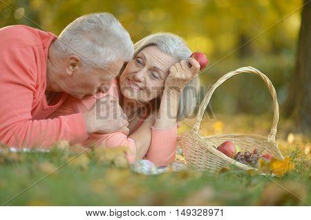Loving elderly couple having a picnic at park