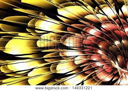 On this picture is colorful Fractal flower in shades of orange, yellow, pink and red.