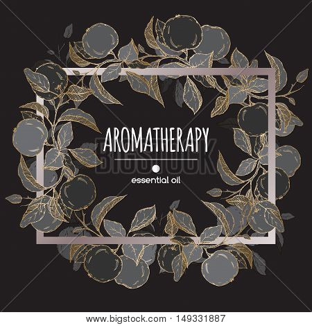 Elegant frame template with black and golden apple fruit and leaves sketch. Aromatherapy series. Great for traditional medicine, perfume design, cooking or gardening.