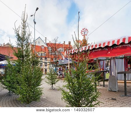 Riga, Latvia - December 25, 2015: Livu square with Christmas trees in the old town in Riga Latvia. The Livu square was established in 1950