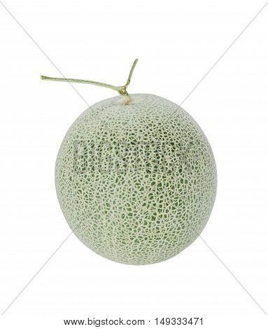 Green Melon On White