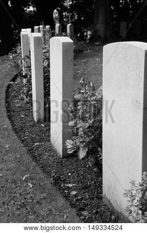 A view of white gravestones in a cemetery