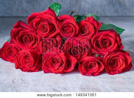 Dozen Red Roses on stone background / Proposal/ Selective focus, close-up