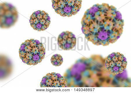 Human papillomaviruses isolated on white background, a virus which causes warts located mainly on hands and feet. Some strains infect genitals and can cause cervical cancer. 3D illustration