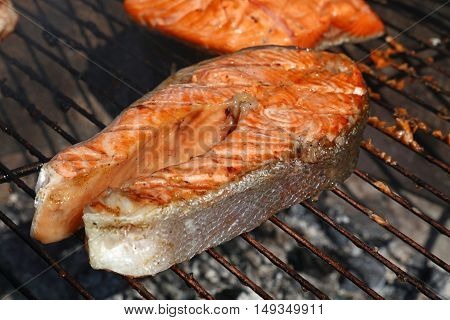Salmon Fish Steak Barbecue Grill Cooking Close Up